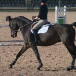 Lengthening at the canter