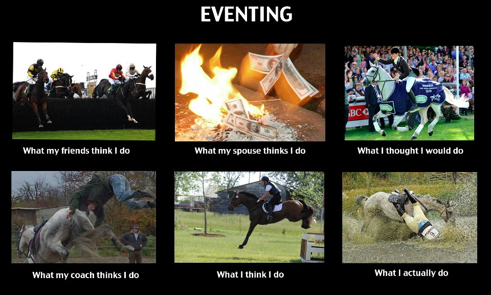 Hilarious eventing meme