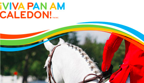 Coming to the Pan Am Games 2015? Here are some tips.