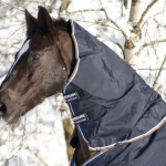 A hood will keep your horse warm during winter
